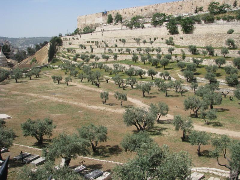 Israel - Kidron Valley