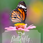 The Butterfly – A Story of Transformation