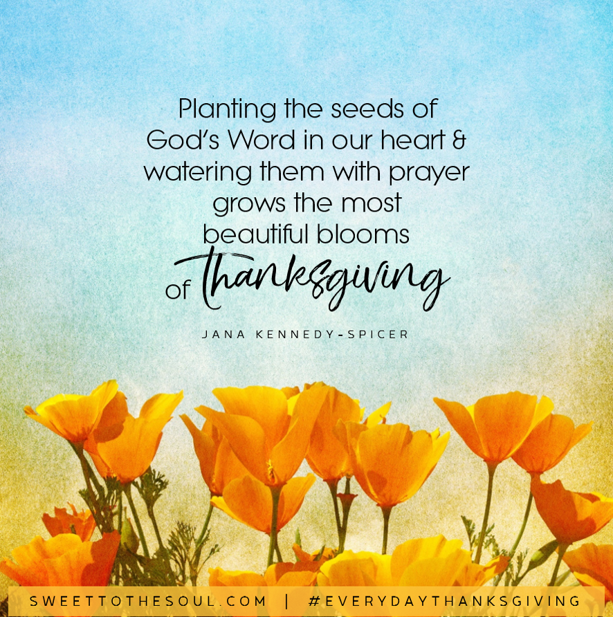 """Planting the seeds of God's Word in our heart & watering them with prayer grows the most beautiful blooms of Thanksgiving"" - Jana Kennedy-Spicer"